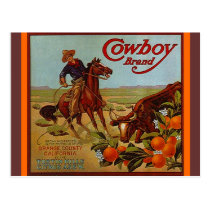 Vintage Cowboy Brand Fruit steer cattle Postcards