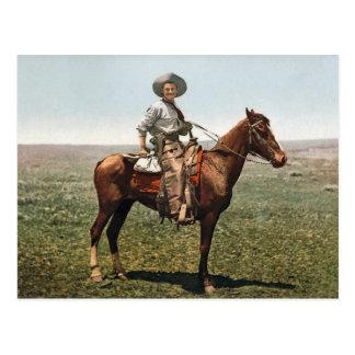 Vintage Cowboy - circa 1904 Postcard