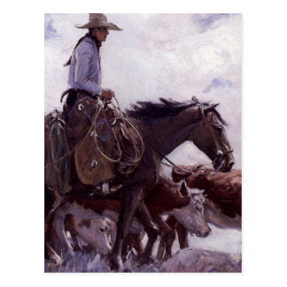 Vintage Cowboy with His Herd of Cattle by Koerner Postcard