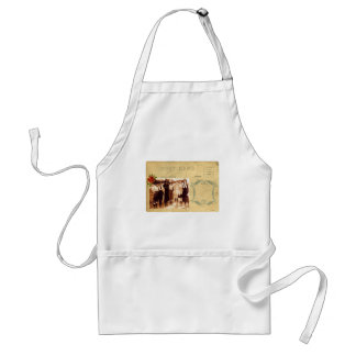 Vintage Cowgirl Post Card Western Group Photograph Adult Apron