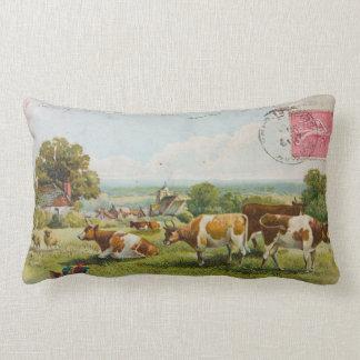 Vintage Cows In A Field Postcard Throw Pillows