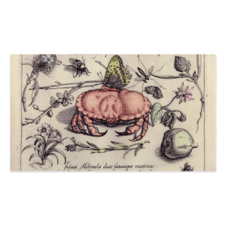 Vintage Crab, Botanicals, Insects, and Flowers Double-Sided Standard Business Cards (Pack Of 100)