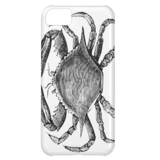 Vintage Crab Drawing Case For iPhone 5C
