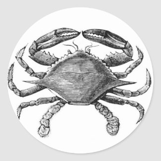 Vintage Crab Drawing Classic Round Sticker