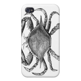 Vintage Crab Drawing iPhone 4 Cases
