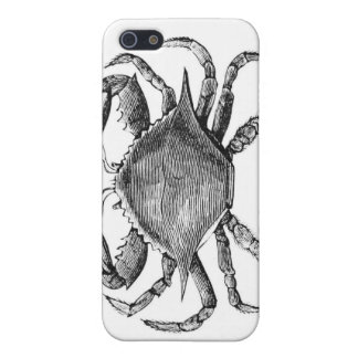 Vintage Crab Drawing iPhone 5 Cover