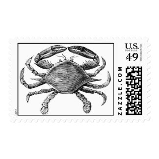 Vintage Crab Drawing Postage