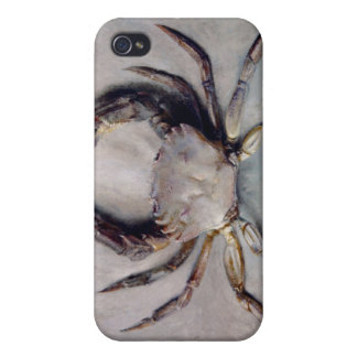 Vintage Crab Painting iPhone 4/4S Covers