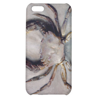 Vintage Crab Painting iPhone 5C Covers