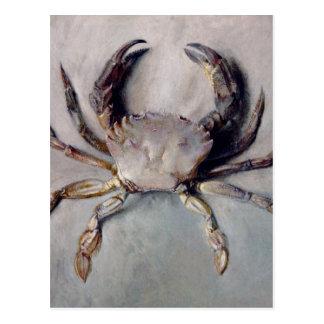 Vintage Crab Painting Postcard