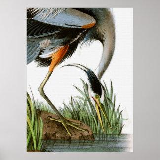 Vintage Crane Illustration Poster