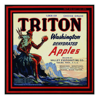 Vintage Crate Label - Triton Apples Poster