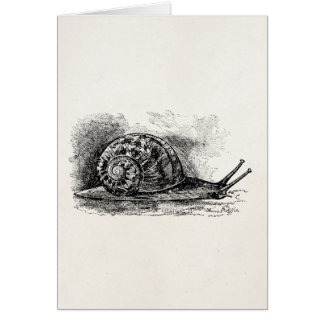 Vintage Crawling Snail Antique Template Card