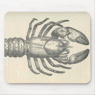 Vintage Crayfish Illustration (1896) Mouse Pad