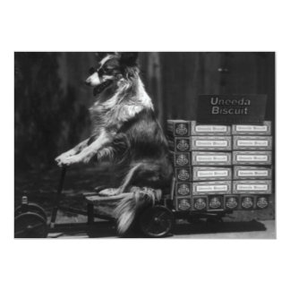 Vintage Crazy Dog Riding Wagon Photo Invite