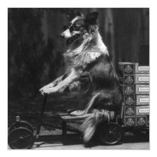 Vintage Crazy Dog Riding Wagon Photo Announcement