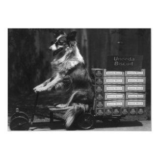 Vintage Crazy Dog Riding Wagon Photo Invitation