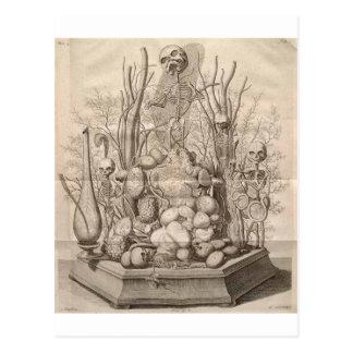 Vintage Creepy Skeletons, Skulls and Trees Postcard
