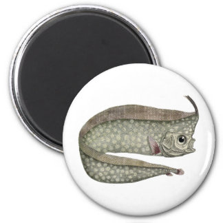 Vintage Crested Oarfish Fish,Marine Aquatic Life, 2 Inch Round Magnet