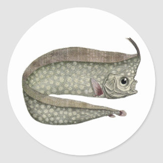 Vintage Crested Oarfish Fish,Marine Aquatic Life, Classic Round Sticker