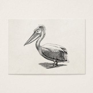 Vintage Crested Pelican Antique Bird Template Business Card