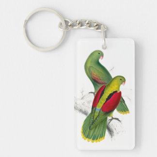 Vintage Crimson Winged Parakeet Rectangular Acrylic Key Chains