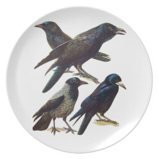 Vintage Crow and Raven Collage, Black Birds Plate