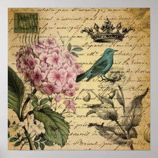 Vintage crown botanical art hydrangea french bird poster