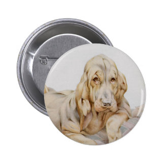 Vintage Cute Bloodhounds, Puppy Dogs by EJ Detmold Pinback Button
