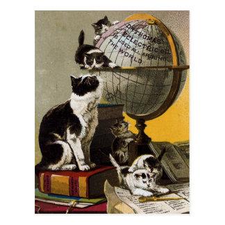 Vintage Cute Cats Kittens School Postcard
