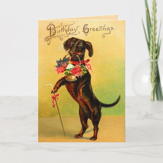Vintage Dachshund Birthday Card Zazzle