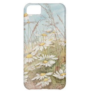 Vintage Daisies In A Field Easter Card Case For iPhone 5C
