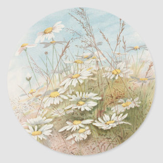 Vintage Daisies In A Field Easter Card Classic Round Sticker