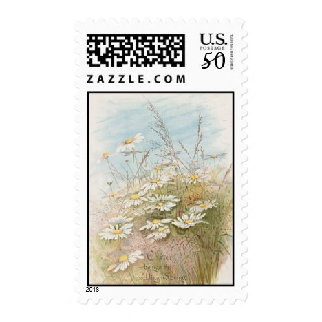 Vintage Daisies In A Field Easter Card Postage