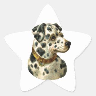 Vintage Dalmation Star Sticker