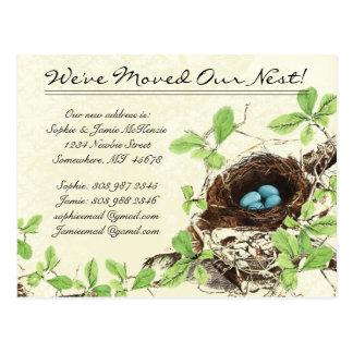 Vintage Damask Nest Eggs We Have Moved Postcard