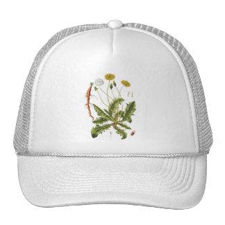 Vintage Dandelion Illustration Trucker Hat