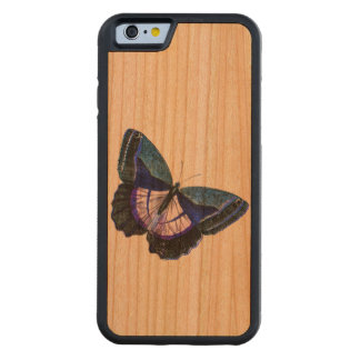 Vintage Dark Blue Purple Butterfly 1896 Template Carved® Cherry iPhone 6 Bumper