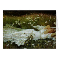 Vintage - Daydreaming in a Field of Daisies,