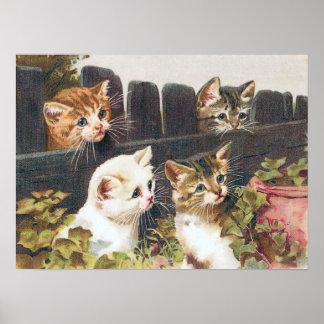 """Vintage de """"cuatro gatitos"""" póster"""