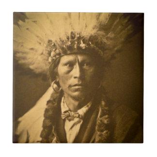 Vintage de Garfield Jicarilla del jefe indio de Ap Azulejos