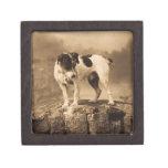 Vintage de Jack Russell Terrier Cajas De Recuerdo De Calidad