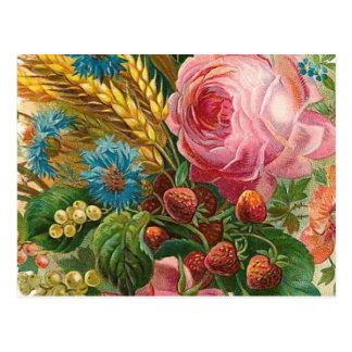 Vintage de la cosecha de la flor de la caída tarjetas postales