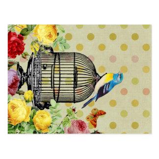 Vintage de la flor de la jaula de pájaros postales