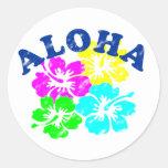 Vintage de la hawaiana etiquetas redondas