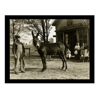 Vintage de la mula y del granjero de Milwaukee Postal
