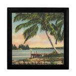 vintage de las palmeras caja de recuerdo