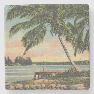 vintage de las palmeras posavasos de piedra