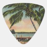 vintage de las palmeras púa de guitarra