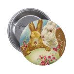 Vintage de los saludos de Pascua del conejo Pins